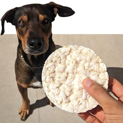 Reiswaffeln für Hunde