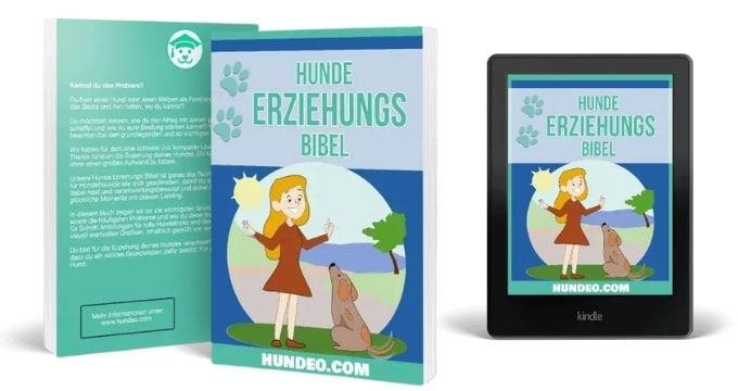 Hunde Erziehungs-Bibel Buch