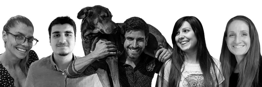 Hunde-Zauber Team